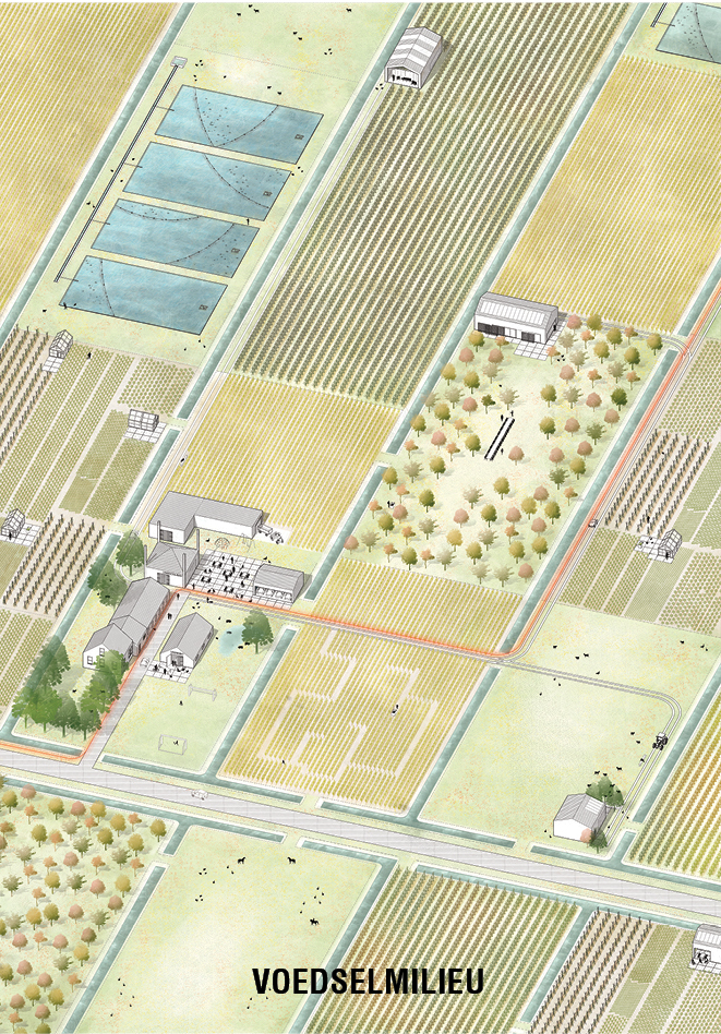 Kleinschalige landbouw op de gronden van klei op veen